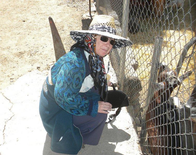 Martine Feeding the Goats the the Oak Tree Village Petting Farm