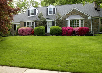 Where Does Our Obsession With Front Lawns Come From?