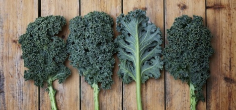 You Must Eat Three Pounds of Kale a Day to Thrive