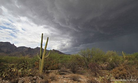Mexican Monsoon Clouds Over Arizona