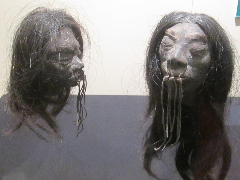 Shrunken Heads from the Amazon