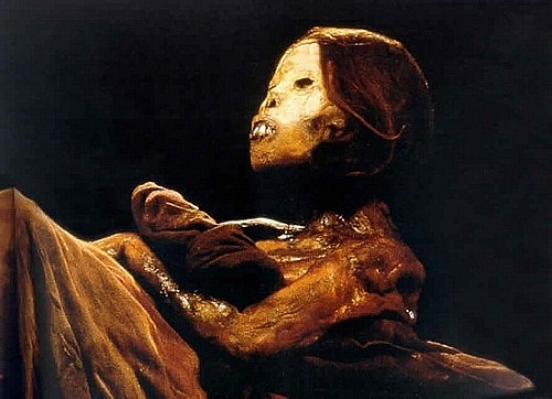 """The Remains of the Inca Maiden Called """"Juanita"""""""