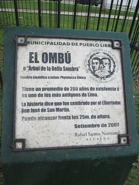 Sign Identifying the Ombú Tree
