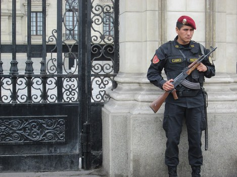 Assault Police Guarding the Palacio de Gobierno