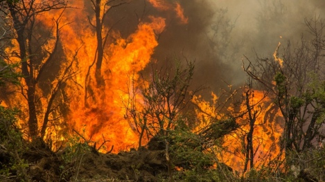 Wildfires in Argentina's State of Chubut