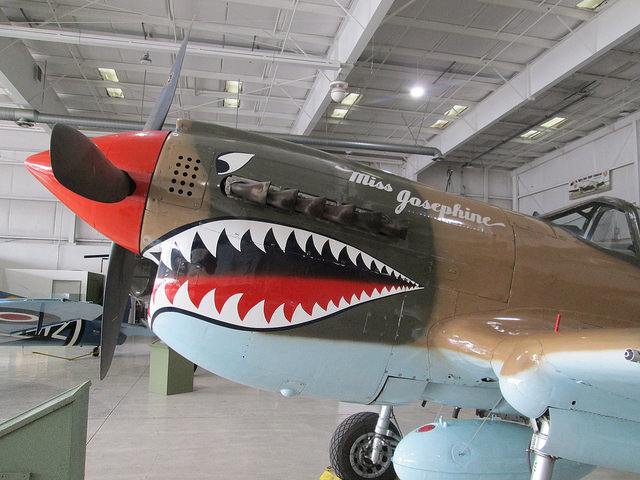 The Sharks of the Air